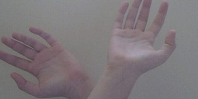 Principios básicos para aprende a interpretar las líneas de la mano