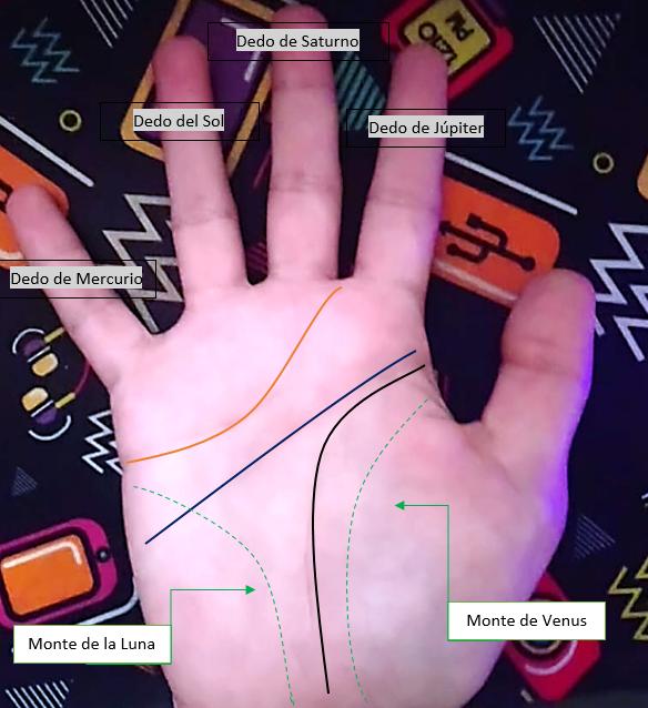 líneas de la mano en la quiromancia