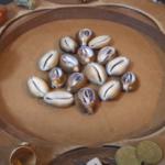 ritual conchas cauri